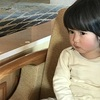 2017 12月14日(木)伊豆・稲取へ
