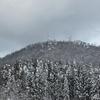 ◆1/13       高館山~のろのろラッセル①…鳥たちを見ていて進まない。