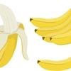 唐突ですがバナナの話、日本での歴史と凍結解凍覚醒法について