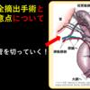 犬猫の脾臓全摘出手術とは?注意すべきこととは?