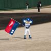 写真はほぼドアラ、野球観戦オープン戦『中日×巨人戦in岡崎市民球場』