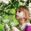 片付けをしない子供のやる気を出させる話し方と逆効果な話し方! ○○しなさいは逆効果です!