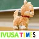 IVUSA TIMES