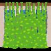 【家庭菜園】グリーンカーテンは結局どうなったのか?