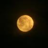 満月...ほぼ(笑)