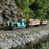 夏コミ新刊「遊覧鉄道を撮ってみたい!」の販売と「保存鉄道に乗ろう」への参加。