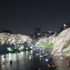 千鳥ヶ淵の夜桜ライトアップはやっぱり素晴らしい!