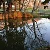 暮景の桜~残照の川面と閉塞感