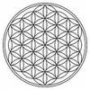 《はごろも天女塾》【陽向天女の神聖幾何学講座2019@横浜&大阪】