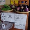 閉園間近 野菜が採れ出しました