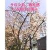 外の景色! 心斎橋/堀江美容室 メンズ/四ツ橋/南堀江