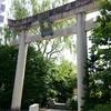 今後の治療方法の相談とまたも「京都観光」