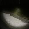 満潮の夜に散歩行けば、潮位高すぎて歩けないwww