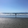 今日の江ノ島