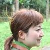巨大ナナフシから蝶の幻想的な乱舞まで!雨季のベトナムの森に泊まる