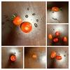 ミニトマトのプランター栽培のコツ 栽培記録と収穫量について