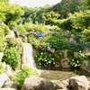 山梨県_花の都公園と河口湖湖上祭