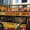 豊洲市場もチラッと見られる、2階建てオープンバスで東京を巡る、はとバスツアーに行ってきました。