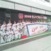 2016広島東洋カープ優勝パレード