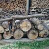 薪ストーブ前史53 乾燥した松はとてつもなく割りにくい