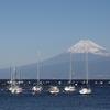 友達と沼津旅行へ行ってきます。