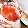 【紅茶とスイーツの美味しいペアリング】ル・ポミエのヨーヨーオマカロンに合う紅茶