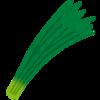 【野菜の保存】ニラの栄養と保存方法