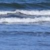 自分流「旅のスタイル探し」。「近場の海でも、旅先の海でも自分のスキルを見極めて、楽しい思い出にしたいサーフトリップ」の巻。