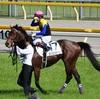 ◆競馬予想◆5/25(土) 特選穴馬&軸馬候補