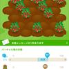 066食目デザート「私のいちご畑 成長記録 収穫」