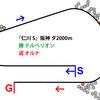 【仁川S・2019年】加速でロスし減速でロスしたオルナ|逃げ馬レース結果