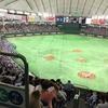 東京ドームで野球観戦をして来ました♪🤩 白熱した戦いでした!😆