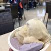 石垣空港のミルミル本舗で塩黒糖ジェラートを食べよう