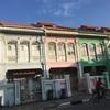 カトン地区でプランカン様式の家をみる@Singapore
