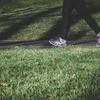 メンタルが弱ってる人は朝散歩をすべし!睡眠障害、不眠症、寝つきが悪いの全てがこれで治ります。