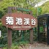 【熊本】雨の菊池渓谷ツーリング