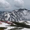 6月の白山