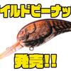 【ダイワ】スーパーワイドアクションのクランクベイト「ワイルドピーナッツ」発売!