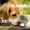 愛犬の飲水量増えた?減った?