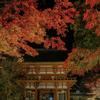 紅葉がライトアップされた奈良県女人高野室生寺へ写真撮影に行ってきました。