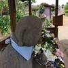 にちよう坐禅会は暫時休止。8月26日より再開です。
