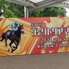 【今週の競馬】ヴィクトリアマイルと現地参戦【東京競馬場行ったよ】