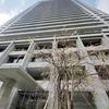 プラザタワー勝どき 勝どきエリアの高級賃貸 タワーマンション 高層階 2LDK 賃貸物件速報 4月6日の速報です♪