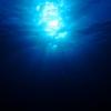 507年生きた貝とその時代の流れ