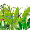 (熱帯魚)ミックス カラシン 種類おまかせ 15匹【水槽/熱帯魚/観賞魚/飼育】【生体】【通販/販売】【アクアリウム】