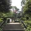 "横浜""Rose Week""(1)"