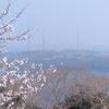 春霞で真っ白