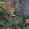 2014年大山の紅葉
