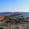 紀伊半島 山と海の旅 〔3〕旅の〆は串本海中公園