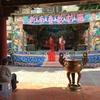 私的台湾な情景③ 廟に捧げる人形劇|台湾ワーホリ|台南語学留学|2018|2019|2020